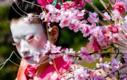 Akim Funk Buddha's Urban Tea Ceremony at Sakura Matsuri in Brooklyn ©Mark D Phillips