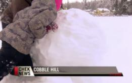 Village of kids turn out to build giant snowman in Cobble Hill